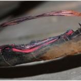 Hati-hati dengan isolasi kabel anda