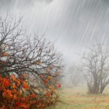Hujan Listrik ??