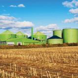 Peluncuran Buku Pedoman untuk Pengembangan Energi Biomass dan Biogas di Indonesia