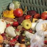 Mengolah Limbah Makanan Jadi Biogas