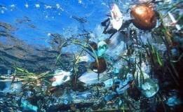 Perbedaan Air Tercemar dan Air Tidak Tercemar
