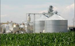 Biofuel ! Bahan Bakar Hayati