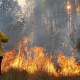 Antisipasi Kerugian Akibat Kebakaran