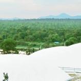 Akhirnya, Indonesia Punya PLT Biogas (terbaharukan) di Belitung