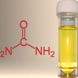 Urin, Sumber Energi Bersih
