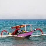 Gelombang Laut untuk Pengawetan Ikan